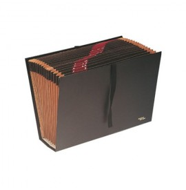 ARCHIVADOR ACORDEON FOLIO